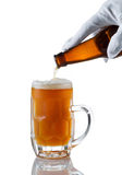 Fresh beer being poured by server. Vertical image of gloved hand pouring amber color beer into glass stein on white with reflection Royalty Free Stock Photo