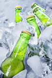 Fresh beer bottles on ice Royalty Free Stock Photos