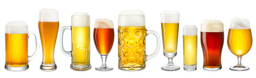 Fresh beer collection Stock Images