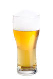 Fresh beer in a glass isolated on white. Royalty Free Stock Photos