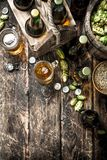 Fresh beer with green hops and malt. royalty free stock photography
