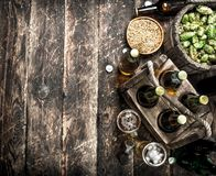 Fresh beer with green hops and malt. royalty free stock images