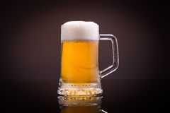 Fresh beer. Mug of cold beer, isolated stock photo
