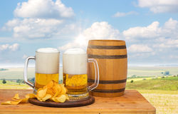Fresh beer in nature. royalty free stock images