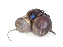 Fresh beet isolated Royalty Free Stock Image