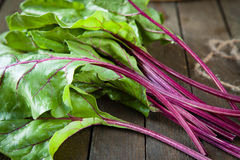 Fresh beet leaves (chard) on the table Stock Image
