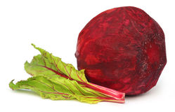 Fresh Beet with leaves Royalty Free Stock Images