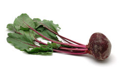 Fresh beet root Royalty Free Stock Photography