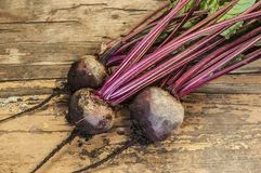 Fresh beet on wooden surface Royalty Free Stock Images