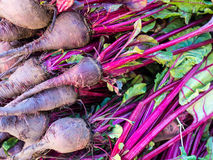 Fresh Beetroot. Fresh beetrot for sale at Greek street market Stock Image