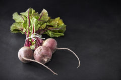 Fresh beetroot bunch on blackboard Royalty Free Stock Image