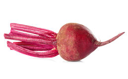 Fresh beetroot Royalty Free Stock Photo