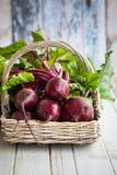 Fresh  beetroot Stock Image