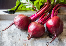 Fresh beetroot. Fresh organic beetroot with leaves Royalty Free Stock Photography