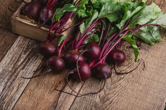 Fresh beetroots on rustic table. Fresh homegrown beetroots on wooden rustic table, harvest time, organic farm Royalty Free Stock Photography