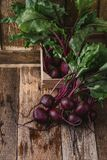 Fresh beetroots on rustic table. Fresh homegrown beetroots on wooden rustic table, harvest time, organic farm Royalty Free Stock Photo