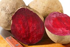 Fresh beetroots Stock Image