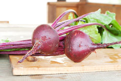 Fresh beets Royalty Free Stock Photos