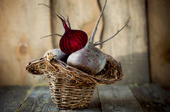 Fresh beets in a basket. Royalty Free Stock Photo