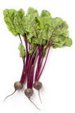 Fresh beets with green leaves