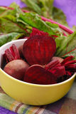 Fresh beets with leaves Stock Image