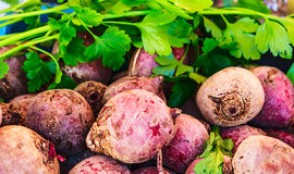 Fresh beets and parsley Stock Photos