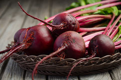 Fresh beets on wooden background Stock Photography