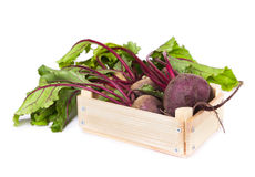 Fresh beets in a wooden box Royalty Free Stock Photo