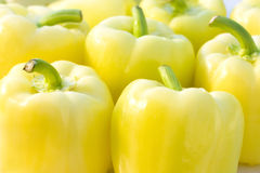 Fresh bell pepper Royalty Free Stock Photography