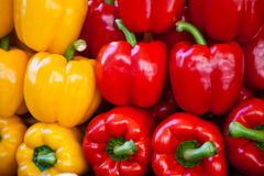 Fresh bell pepper Royalty Free Stock Photo