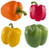 Fresh Bell Pepper Series Stock Image