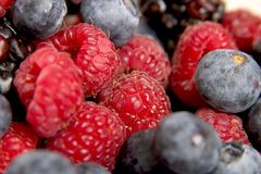 Fresh Berries Royalty Free Stock Photo