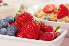 Fresh berries. Close up of fresh berries Royalty Free Stock Photography