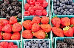 Fresh berries Royalty Free Stock Image