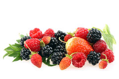 Fresh berries. Royalty Free Stock Photography