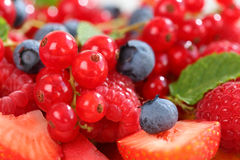 Fresh berries Stock Images