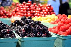 Fresh berries at farmers market. Colorful display of fresh berries at a farmers market Royalty Free Stock Image