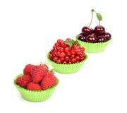 Fresh berries Royalty Free Stock Photos