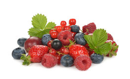 Free Fresh Berries Stock Images - 56673034