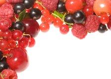 Fresh berries as frame Stock Photos