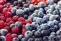 Fresh berries assortment Stock Photo