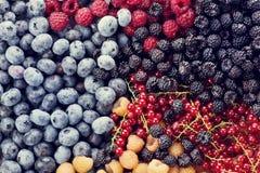 Fresh berries assortment Stock Photos