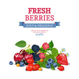 Fresh Berries Background Ad Background Poster Royalty Free Stock Photography