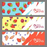 Fresh berries banners royalty free stock photography