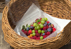 Fresh berries in basket Stock Images