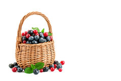 Fresh berries in basket isolated on white background Royalty Free Stock Images