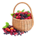 Fresh berries in basket isolated on white background. With clipping path Royalty Free Stock Photography