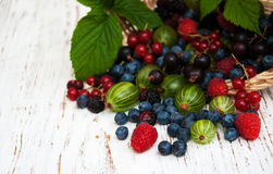 Fresh berries with basket. On a wooden background Stock Images