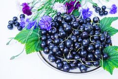 Fresh berries of black currant in a plate on a table. For a diet and saturation with vitamins stock photos
