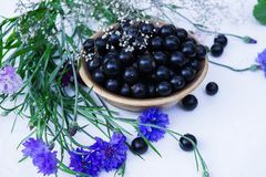 Fresh berries of black currant in a plate on a table together with cornflowers . For a diet and saturation with vitamins.  stock photography